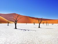 Sossusvlei in Namib-Naukluft National Park, Namibia