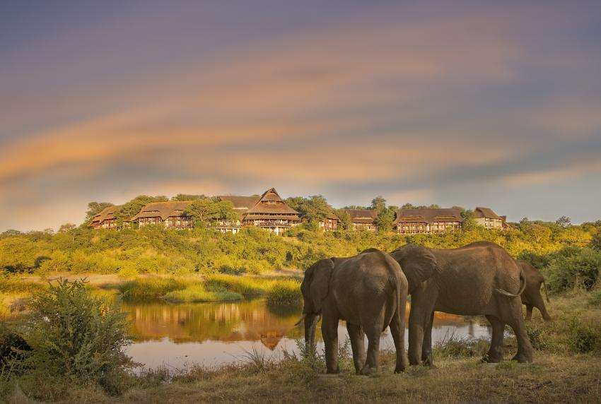 Elephants in front of Victoria Falls Safari Lodge